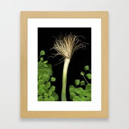 Bedhead Scallion Framed Art Print