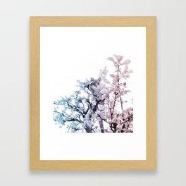 kitten in a tree Framed Art Print
