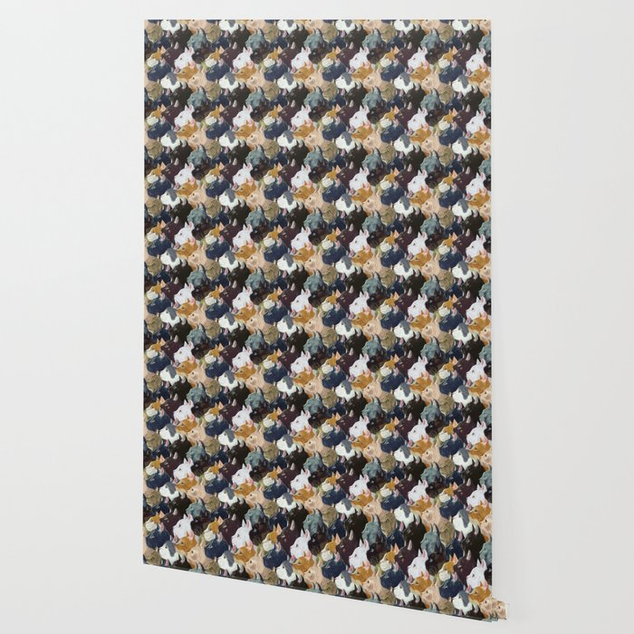Never ending cats Wallpaper