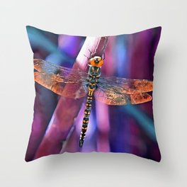 Dragonfly In Orange and Blue Throw Pillow