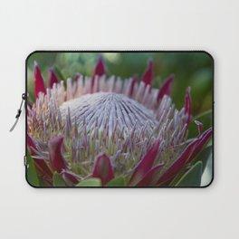 King Protea Island Flowers Jewel of the Garden Laptop Sleeve