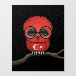 Baby Owl with Glasses and Turkish Flag Canvas Print