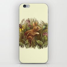The Cottontail and the Katydid iPhone Skin