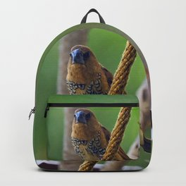 Nutmeg Mannikin Backpack