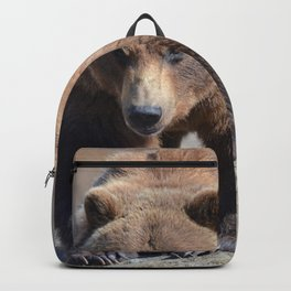 Alaskan Grizzly Bear - Spring Backpack
