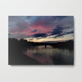 Basel - Pink Beauty Metal Print