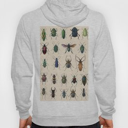 Insects, flies, ants, bugs Hoody