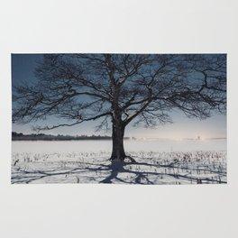 Winter Shadows Rug