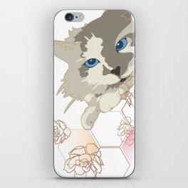 Cacti Cat iPhone Skin