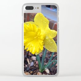 Drops on the Daffodils Clear iPhone Case