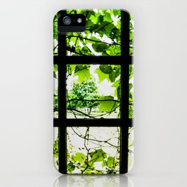 Through the Green Green Glass iPhone Case
