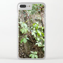 Peaceful place Clear iPhone Case