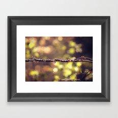 Twisted Vine Framed Art Print