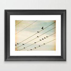 Birds & Lines #1 Framed Art Print