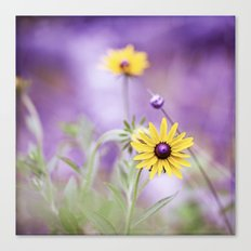 Purple Yellow Flower Photography, Violet Floral Green Nature Canvas Print