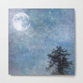 Moon lit flight Metal Print