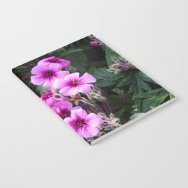 Beauty on The Rock Notebook