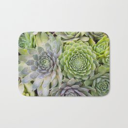 Bountiful Succulents Bath Mat