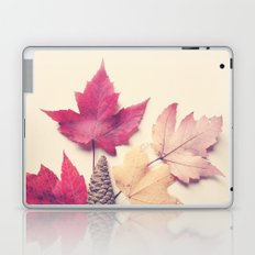 Red Maple Leaf Collection Laptop & iPad Skin