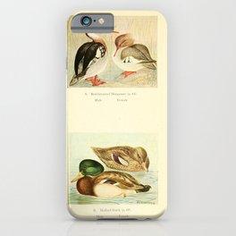 Red breasted Merganser Mallard Duck10 iPhone Case