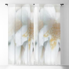 Blossom Blackout Curtain