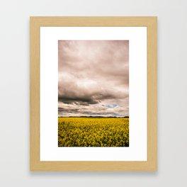 flower fields - vertical Framed Art Print