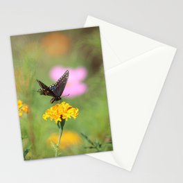 Swallow Tail Dream Stationery Cards
