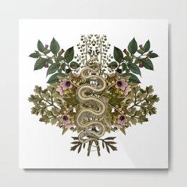 Wormwood Belladonna Hensbane And Snake Skeleton Metal Print