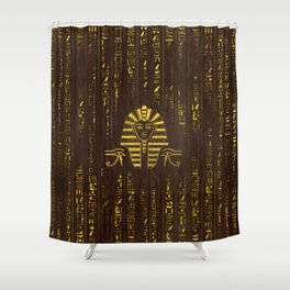 Golden Egyptian Sphinx and hieroglyphics on wood Shower Curtain