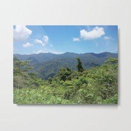 Mountain Jungle Metal Print