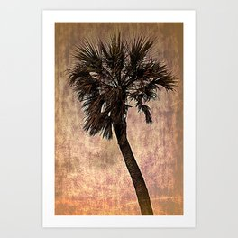 Florida Palm Art Print