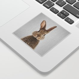 Rabbit - Colorful Sticker
