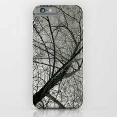 Withered Away iPhone 6 Slim Case