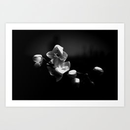 Branching Out Small Flower Art Print