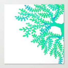 Green Tree. Canvas Print