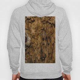 Rotten Wood Hoody
