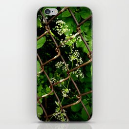 Flowers in the Chainlink Fence iPhone Skin