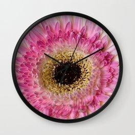 Gebera Daisy Wall Clock