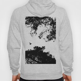 freedom to fly up to sky Hoody