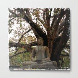 Buddha Statue at Abhayagiri Stupa 2 Metal Print