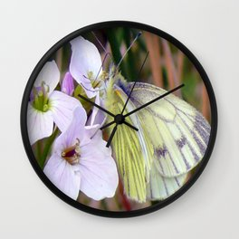GREEN VEINED WHITE ON LADIES SMOCK Wall Clock