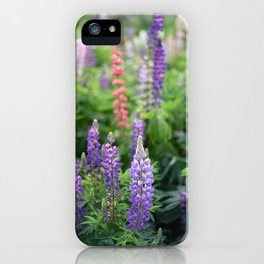 Purple lupines in the field iPhone Case