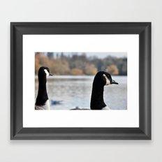 Geese outlook Framed Art Print
