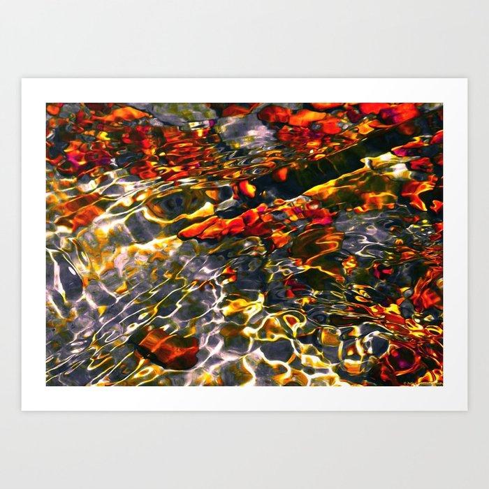 """Koi Atlas"" Art Print"