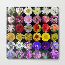 Rainbow Flowers Metal Print