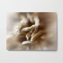 Microscopic photography garlic Metal Print