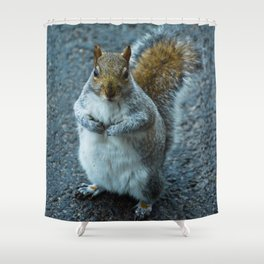 Feeling Nutty Shower Curtain