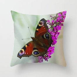Peacock butterfly on a buddleia Throw Pillow