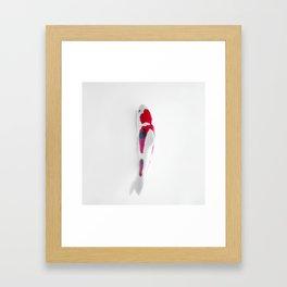 KOINOBORI Lucky Carpa Framed Art Print