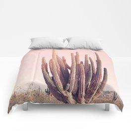 Blush Cactus Comforters